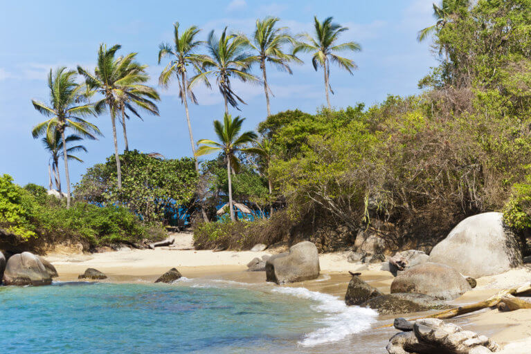 Palm trees and tropical beaches at Tayrona National Park during a luxury trip to Colombia