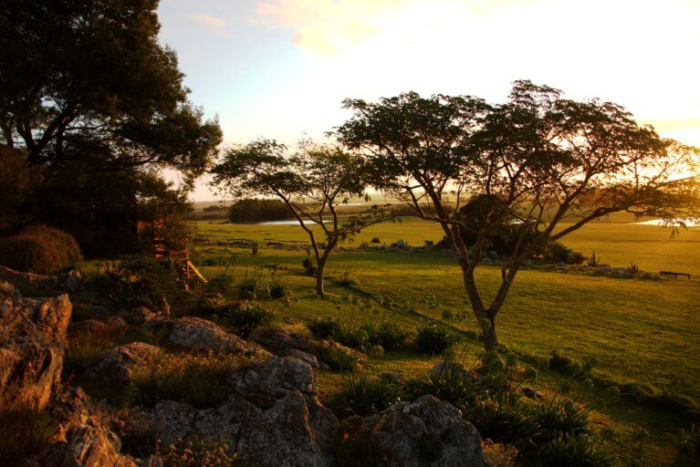 Uruguayan countryside at sunset as seen on a luxury Uruguay tour