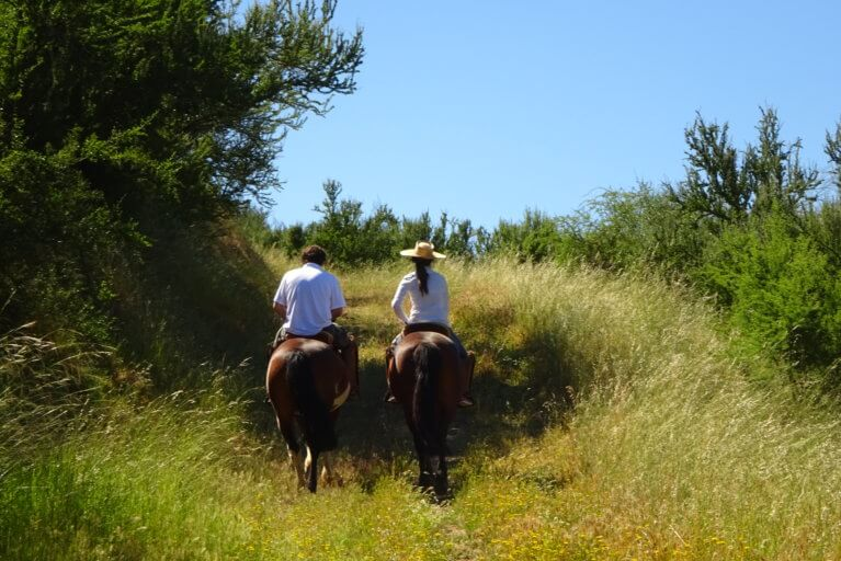 Man and woman horseback riding through grassy trail on a private Easter Island tour, Chile