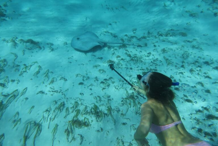 Woman snorkeling in clear waters and taking picture of tropical fish in the San Blas Islands on a luxury Panama trip
