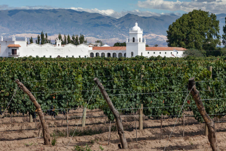 Bodega El Esteco among vineyards and backdrop of mountains in Northern Argentina as seen during a luxury trip to Argentina