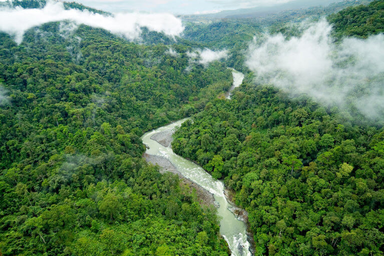 Aerial view of river and rainforest in Pacuare during a private tour of Costa Rica