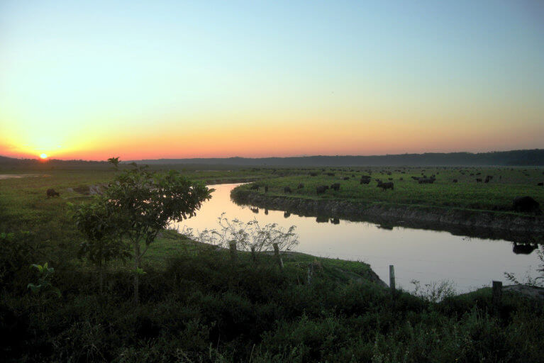 View of Buffalo Valley river at sunset in Bahia