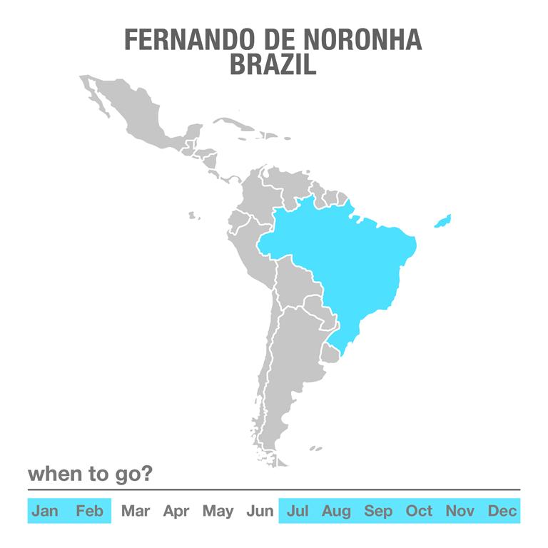 Luxury Tours Fernando de Noronha, Brazil