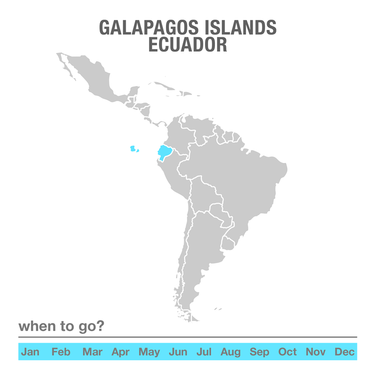Luxury Tours Galapagos Islands, Ecuador