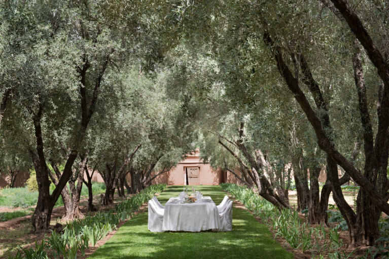 Private meal among the trees at Dar Ahlam during a luxury Morocco trip