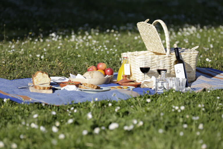 Gourmet picnic on the grass in the Alentejo region during a private Portugal tour