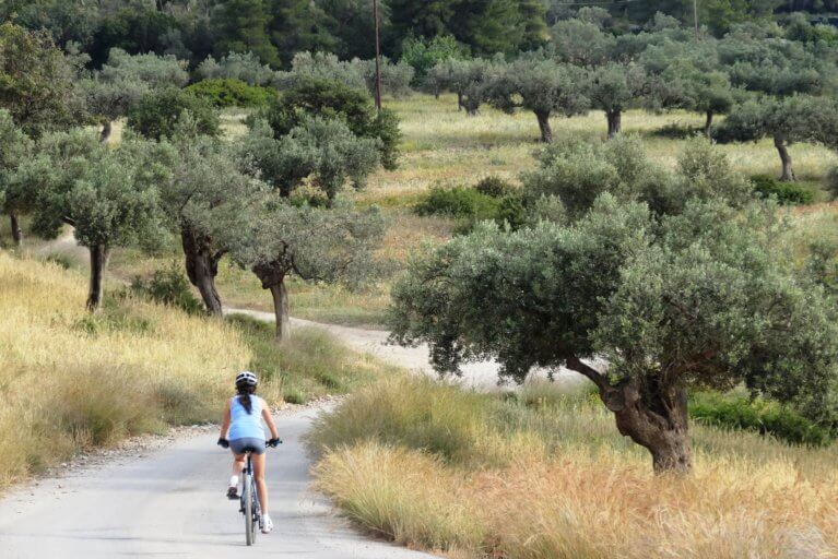 Biking among olive groves in Peloponnese during a private Greece tour