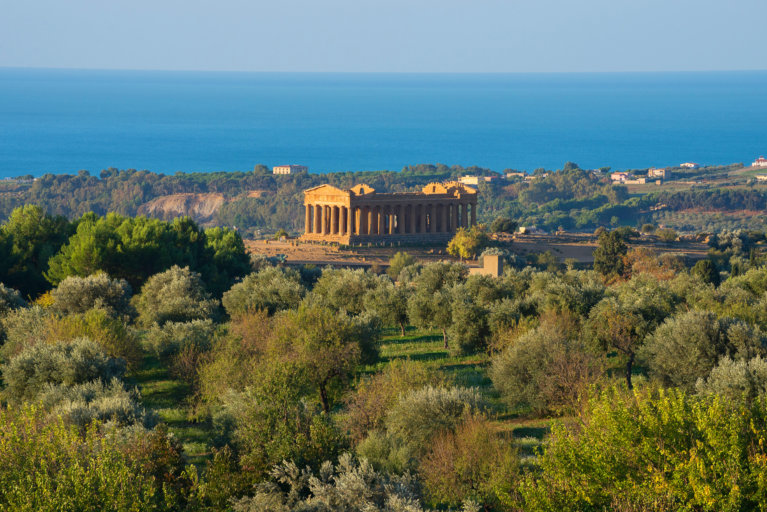 Valley of the Temples in the distance surrounded by trees in private Sicily tour