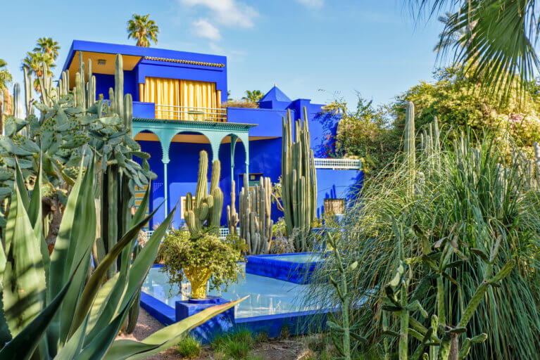 Cobalt blue and yellow house at Majorelle Gardens in Marrakesh during a private Morocco tour