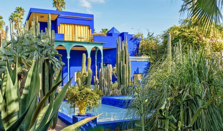 Jardin Majorelle during a private Morocco tour