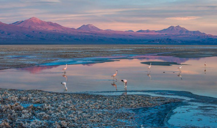 Salar de Atacama during luxury Chile tour