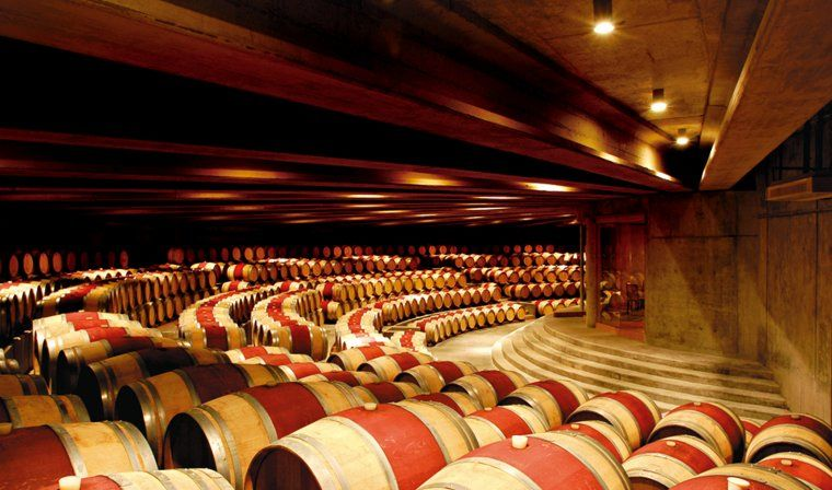 Montes Winery in Chile during private Chile tour